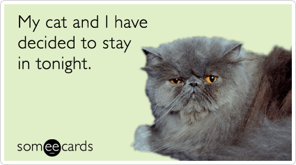 Funny Pets Ecard: My cat and I have decided to stay in tonight.