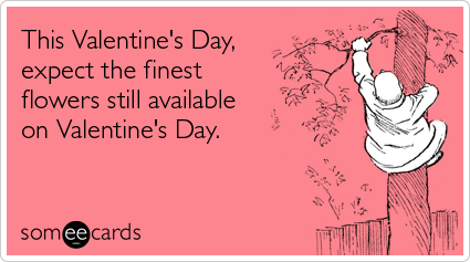 Funny Valentine's Day Ecard: This Valentine's Day, expect the finest flowers still available on Valentine's Day.