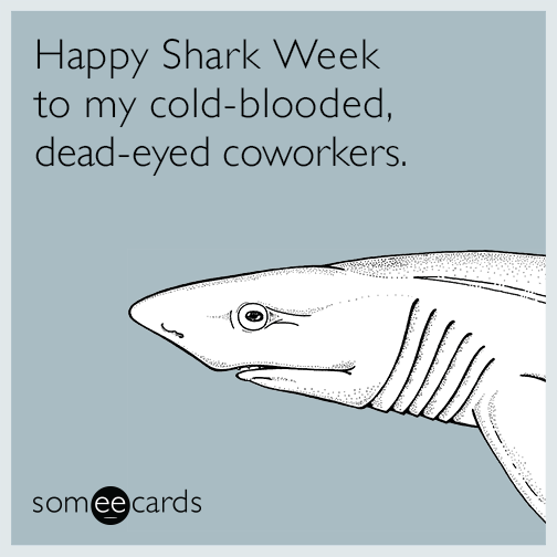 Happy Shark Week To My Cold Blooded Dead Eyed Coworkers