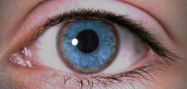 أعراض مرض ويلسون - سطور