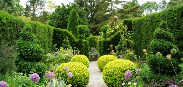 موضوع تعبير عن أهمية الحدائق للصف الرابع سطور