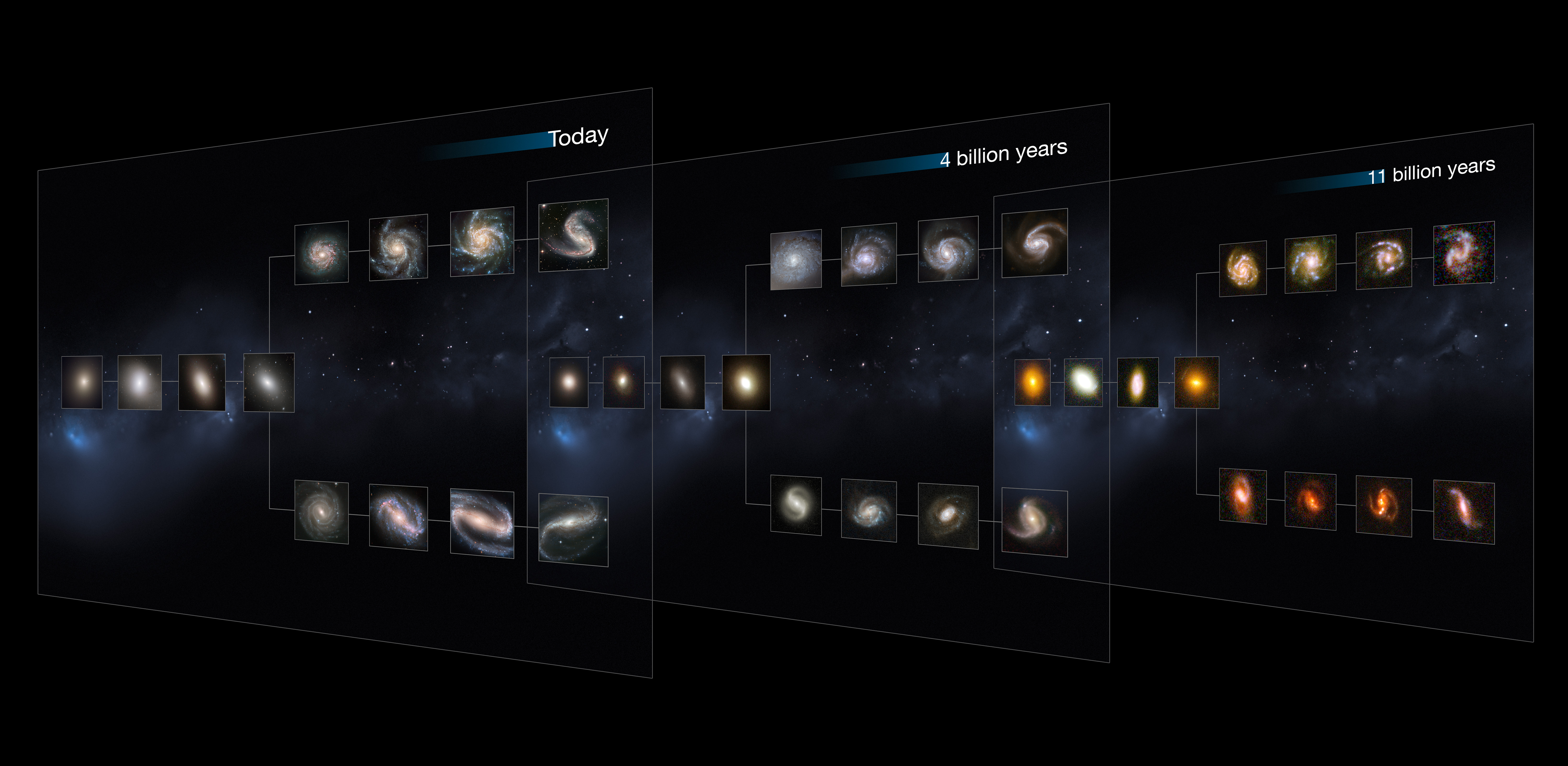 The Hubble Sequence Throughout The Universe S History
