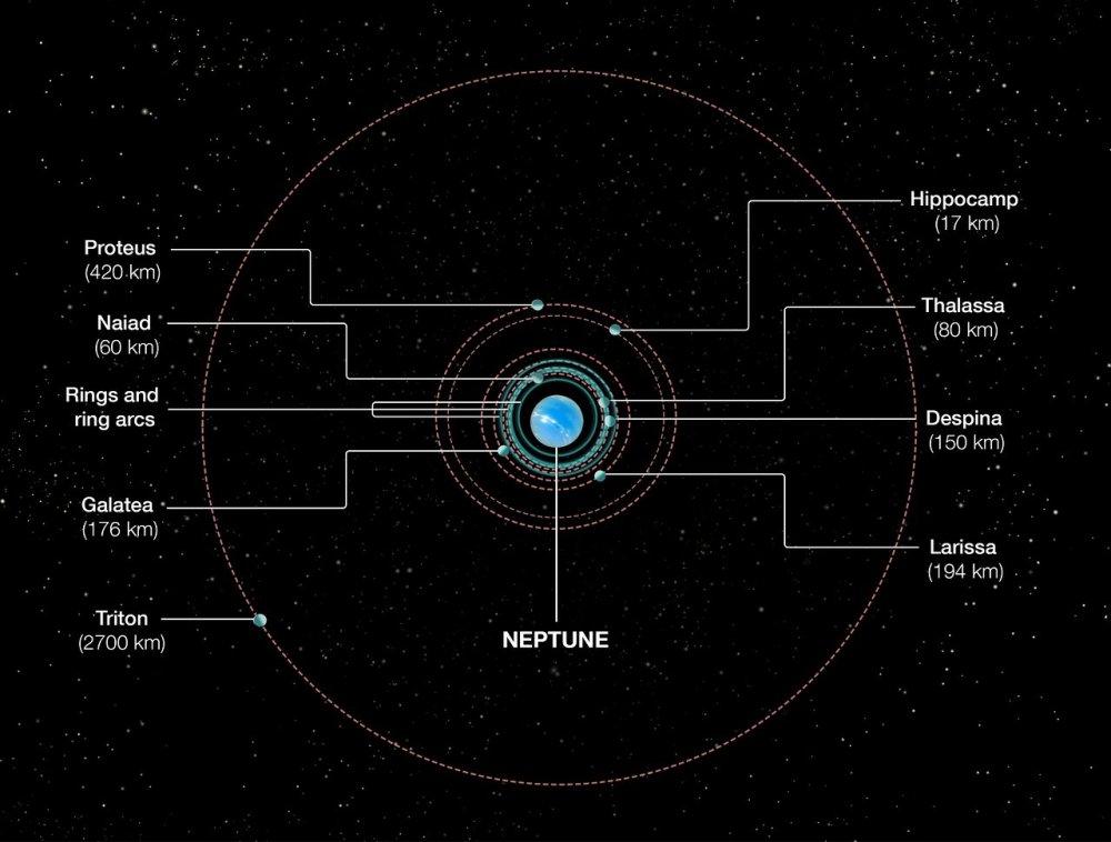 medium resolution of orbits of neptune s inner moons