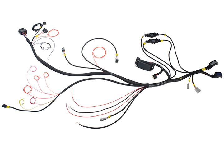 AEM Debuts Coyote Engine Harness Adapter For Infinity ECUs