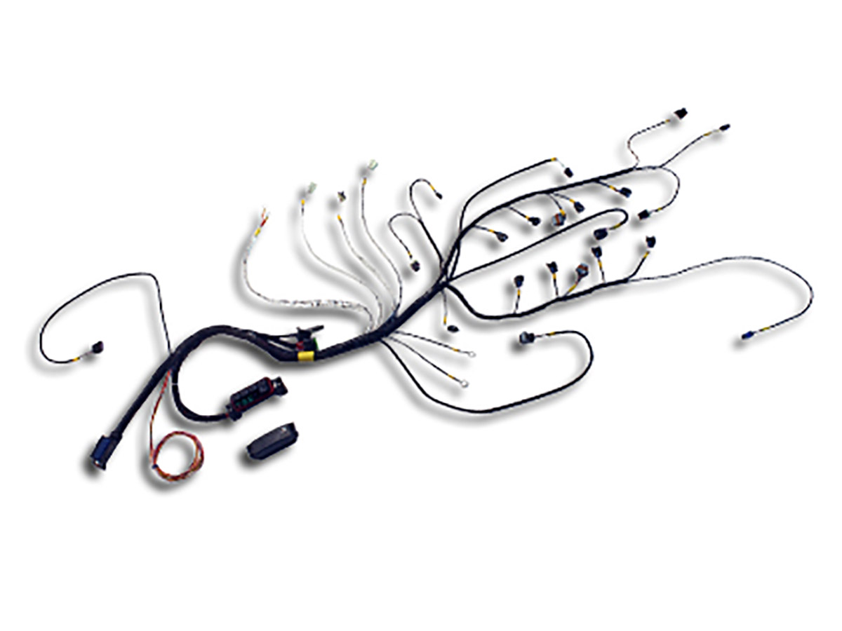 AEM Launches Plug And Play Wiring Harness For GM LS Race