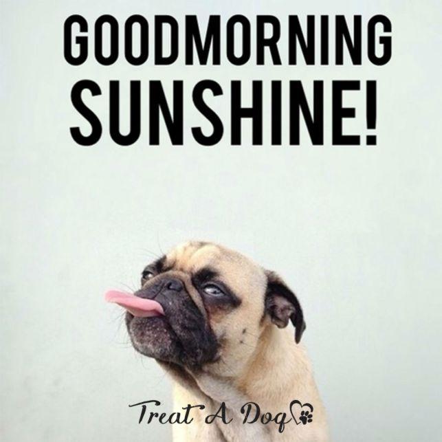 good-morning-meme-1