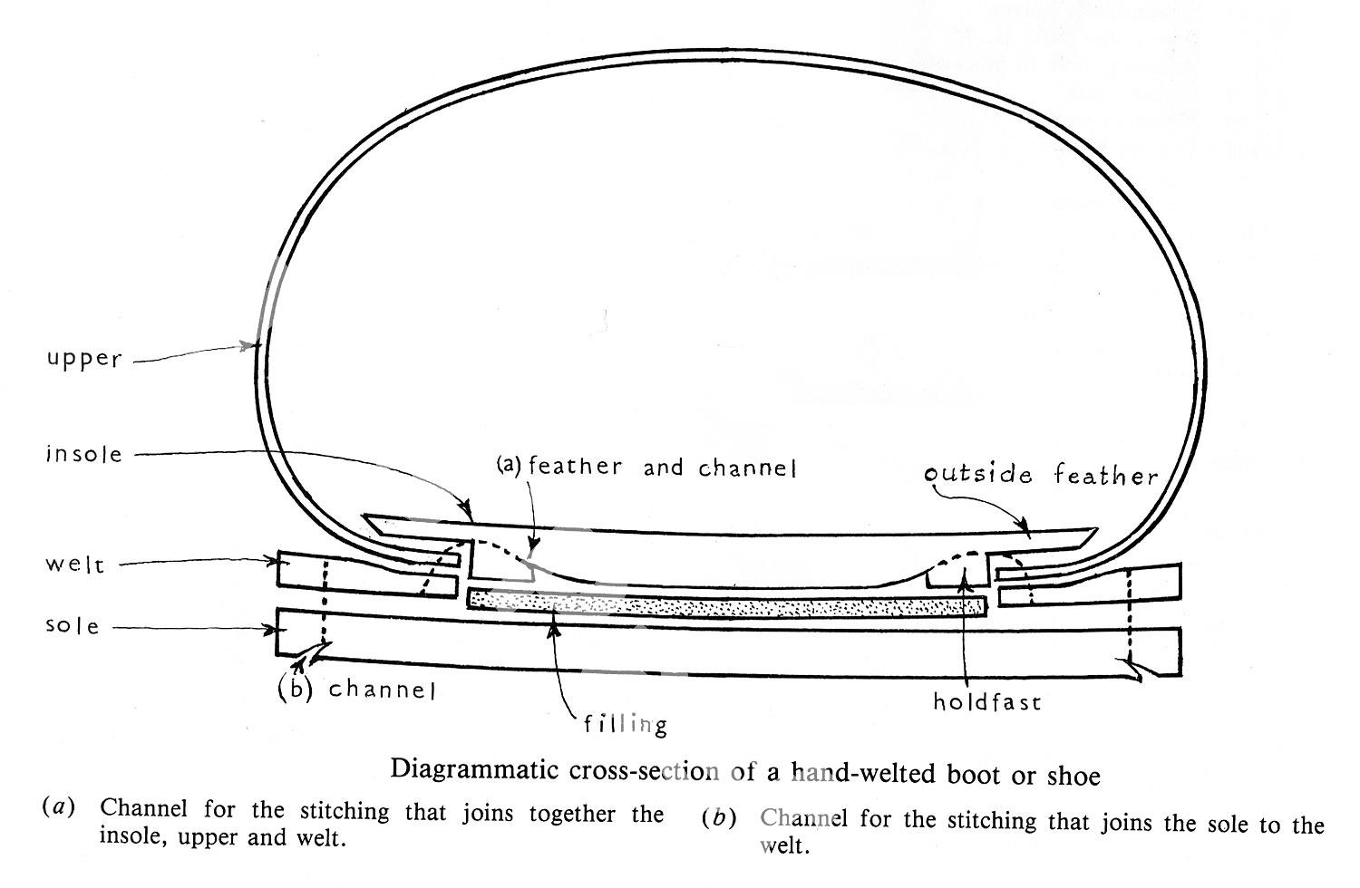 hight resolution of cross section diagram showing shoe construction
