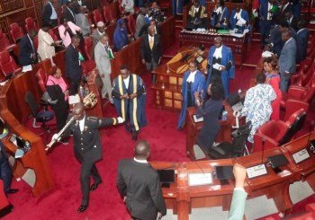 How Senate trashed MES report