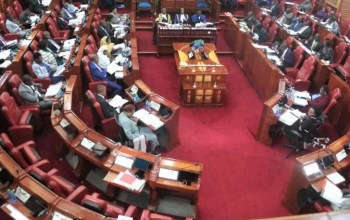 Senate revenue committee back to drawing board