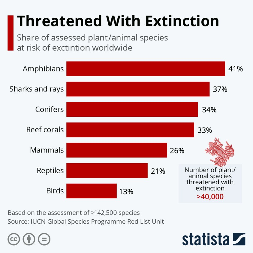 he share of plant/animal species at risk of extinction worldwide