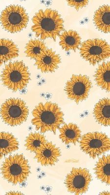 Sunflower Tumblr Background : sunflower, tumblr, background, Sunflower, Wallpaper, Tumblr