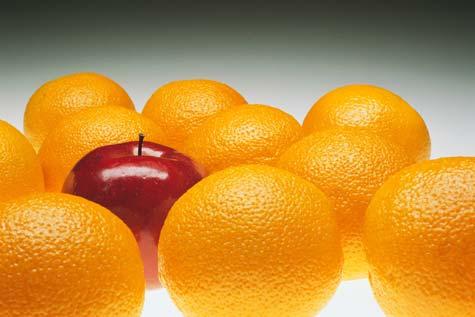 Apel-di-tengah-jeruk