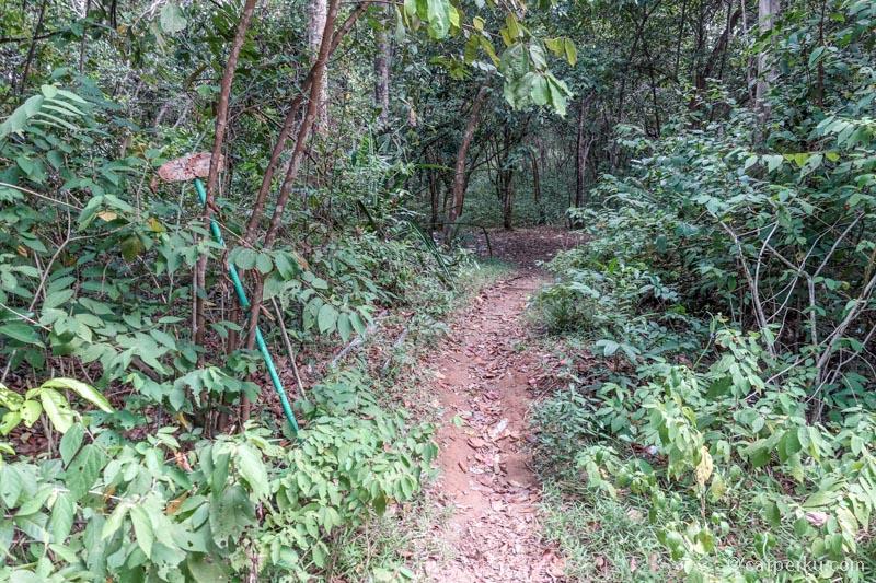 Jalur trekking ke Puncak Bukit Baginde hanya ditandai dengan papan petunjuk kayu berukuran kecil ini