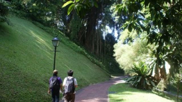 Selalu ada hutan diantara gedung bertingkat Singapore! Kalau mau jalan hemat ke Singapura, banyak-banyaklah jalan kaki ya.