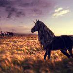 Unicorn Wallpaper Horse