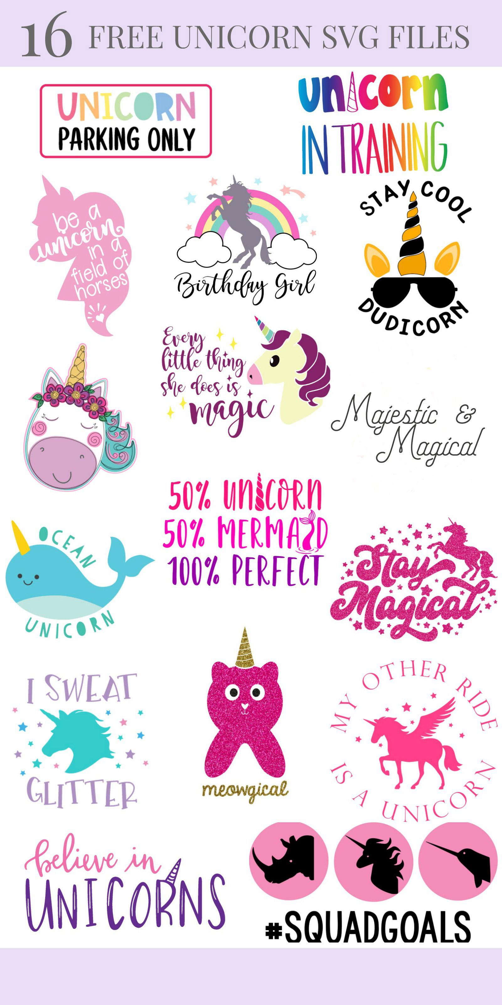 Unicorn Head Svg Free : unicorn, First, Birthday, Unicorn