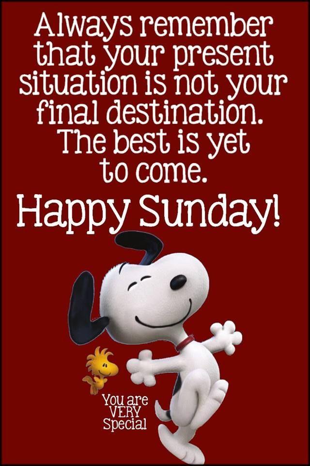 Sunday Whatsapp Images Funny : sunday, whatsapp, images, funny, Funny, Happy, Sunday, Images, Quotes