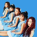 Red Velvet Live Wallpaper