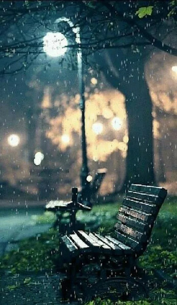 Alone Rain Wallpaper : alone, wallpaper, Alone, Wallpaper
