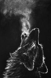 Black Wolf Artwork Wolf Wallpaper Hd