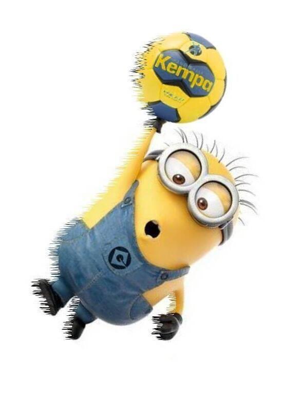 lustige bilder handball em