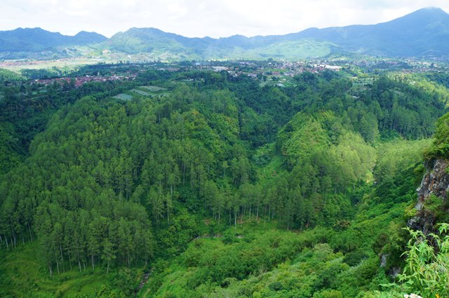 Green, only green color can be seen around Tebing Keraton.