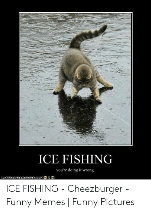 Funny Ice Fishing Memes : funny, fishing, memes, Funny, Fishing, Pictures