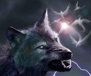 Wallpaper Mystical Wallpaper Wolf Photos