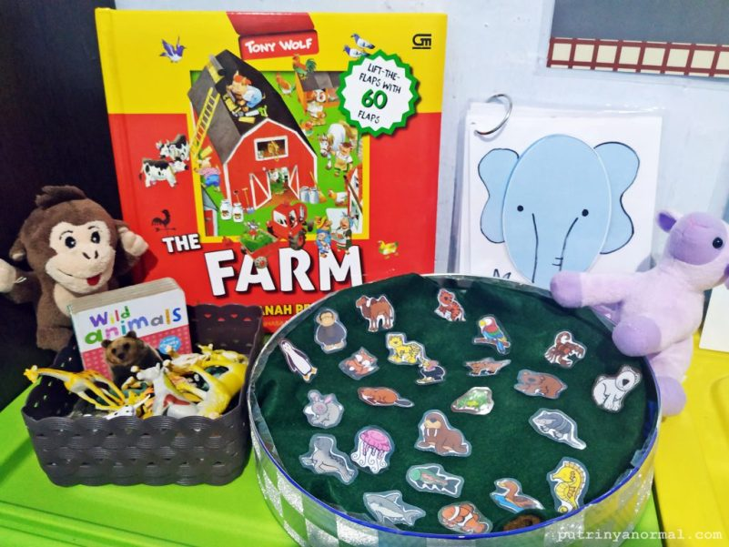 Toy rotation tema farm