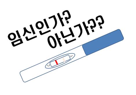 임신확인 (1).png
