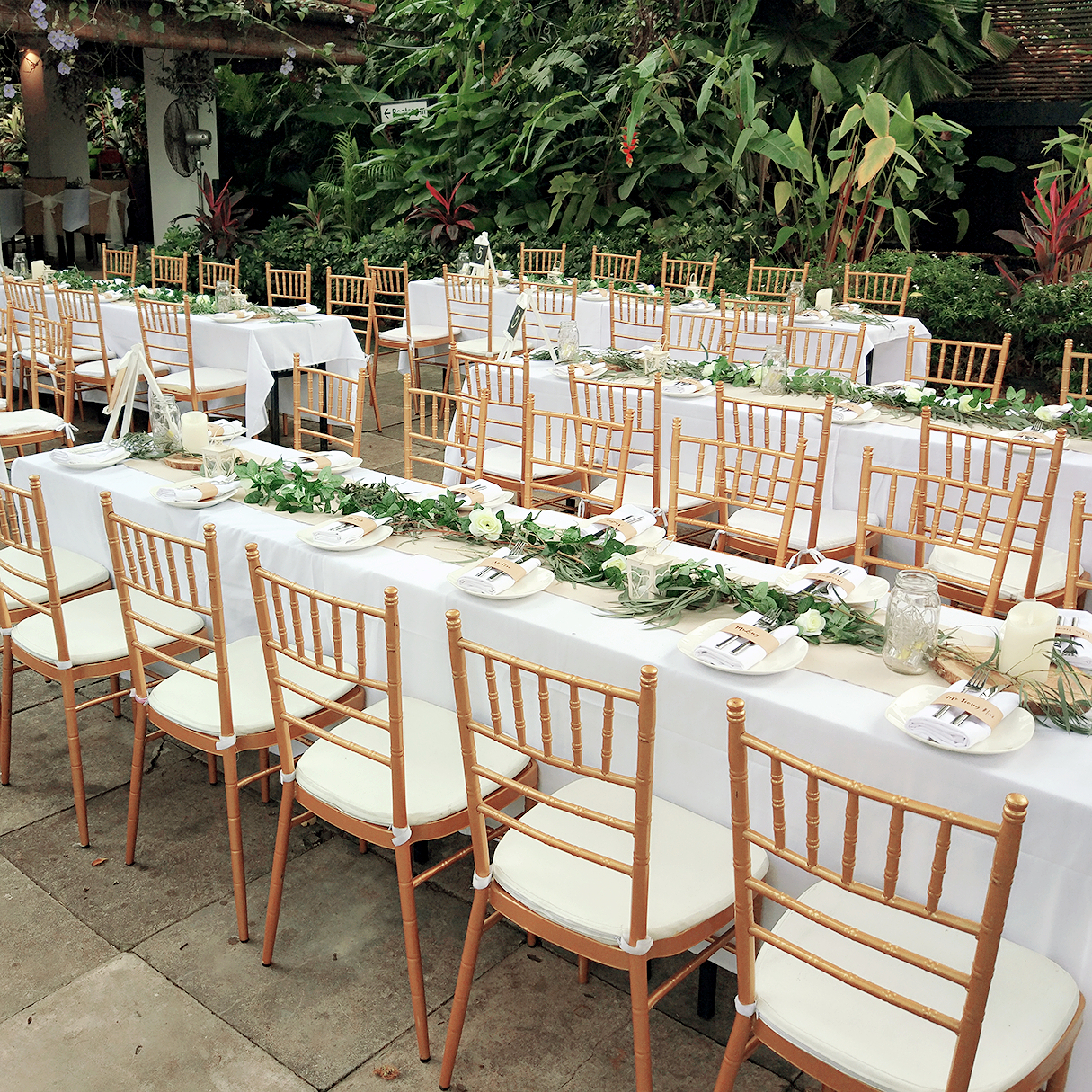 tiffany wedding chairs ciao portable high chair reviews gold rental with free usage of white cushion
