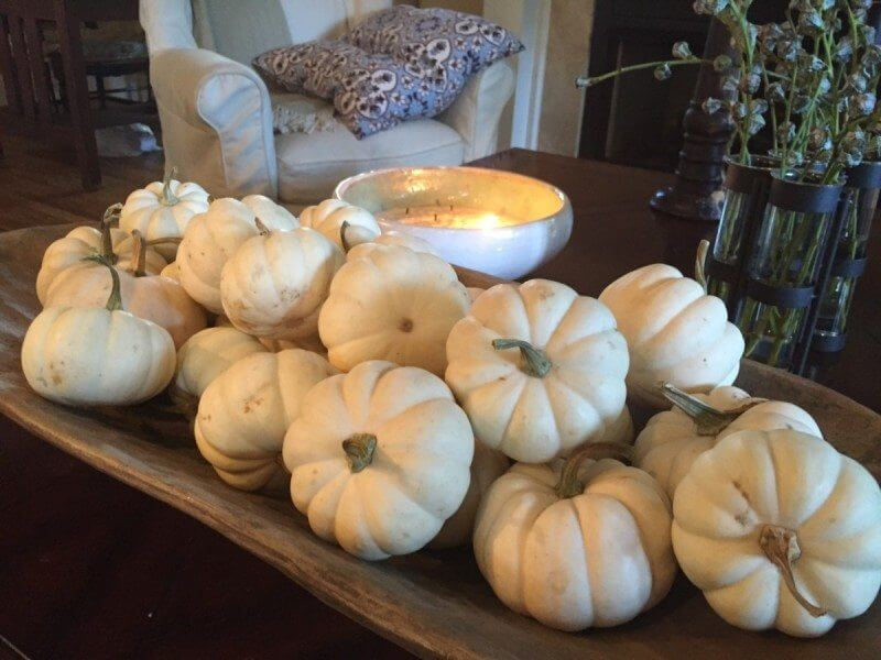 White Pumpkins and Fall Decor