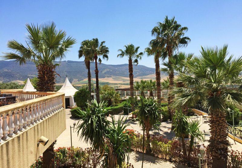 Sur la terrasse de l'hôtel se dressent des palmiers sur fond de montagnes.