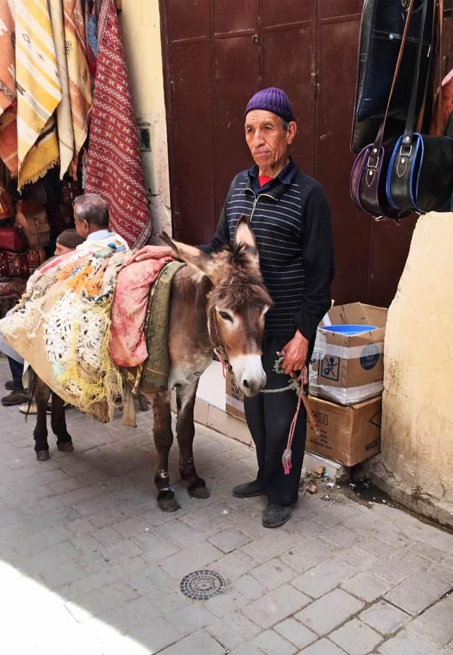 Un monsieur et son âne font une petite pause dans le souk.