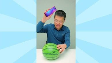 Photo of Lagi, Uji Ketahanan Redmi Note 7 Melibatkan Buah Semangka dan Durian