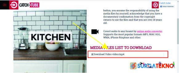 klik download video pada catch tube