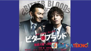 Photo of Review Drama Jepang: Bitter Blood (2014)
