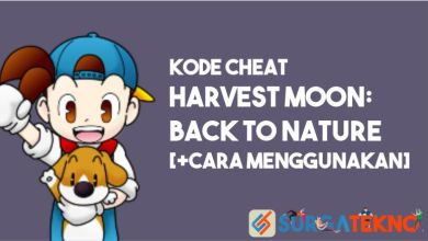 Photo of Kode Cheat Harvest Moon Back to Nature [+Cara Menggunakan]