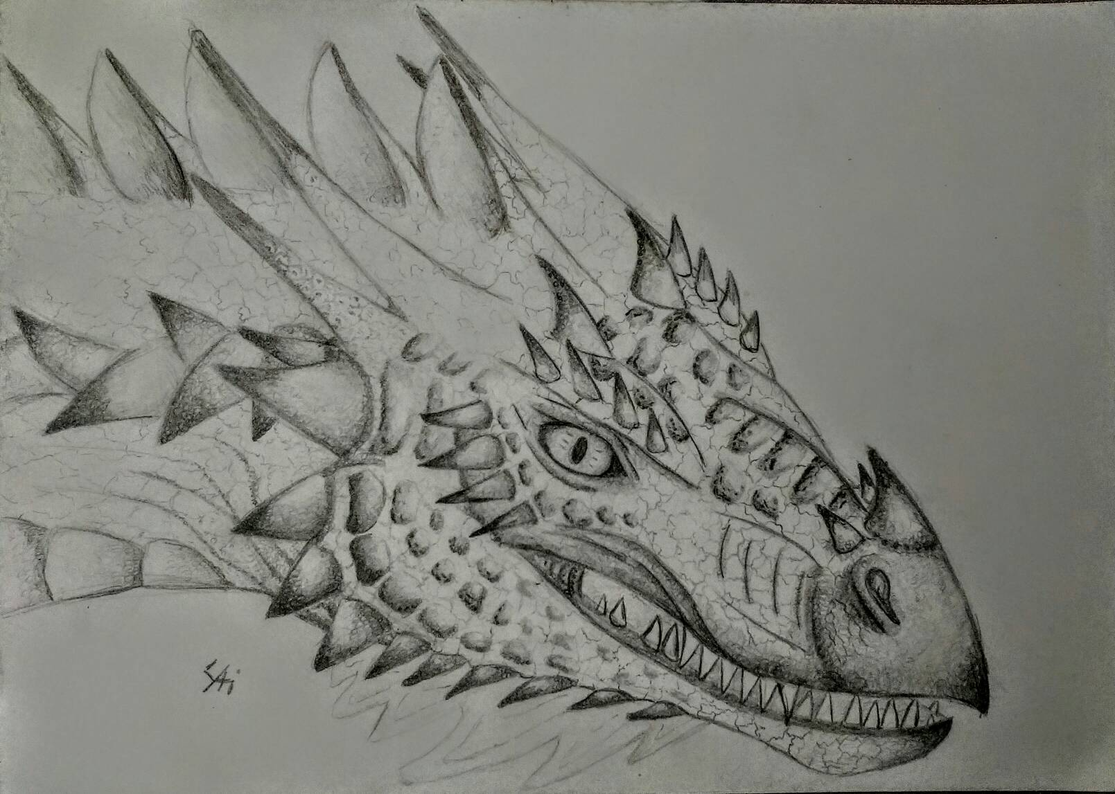 fire wyvern drawing creative