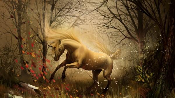 Enchanted Magical Forest Unicorns
