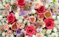 Colorful roses in the bouquet wallpaper - Flower ...