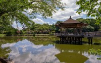 Dirty lake in a japanese garden wallpaper - World ...