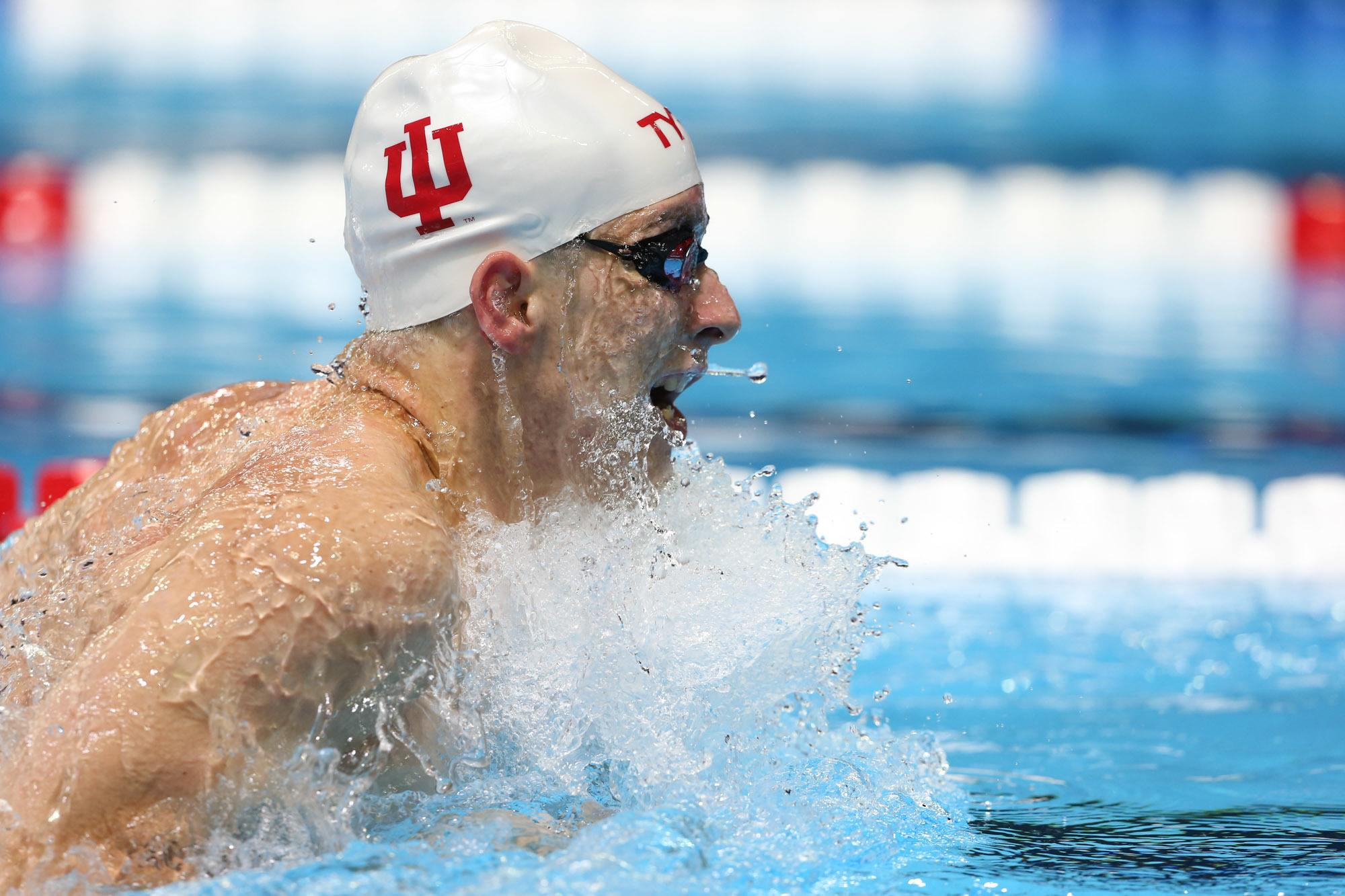 Image result for indiana men's swimming finnerty