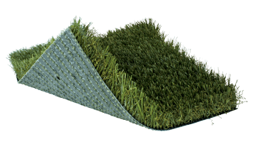 SoftLawn® Kentucky Blue Plus | Landscape Turf | Synthetic Turf Manufacturer