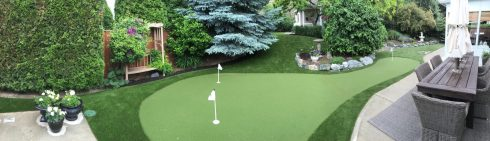 Residential Putting Green Synthetic Turf