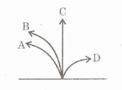 A neutron, a proton, an electron and an α-particle enter a