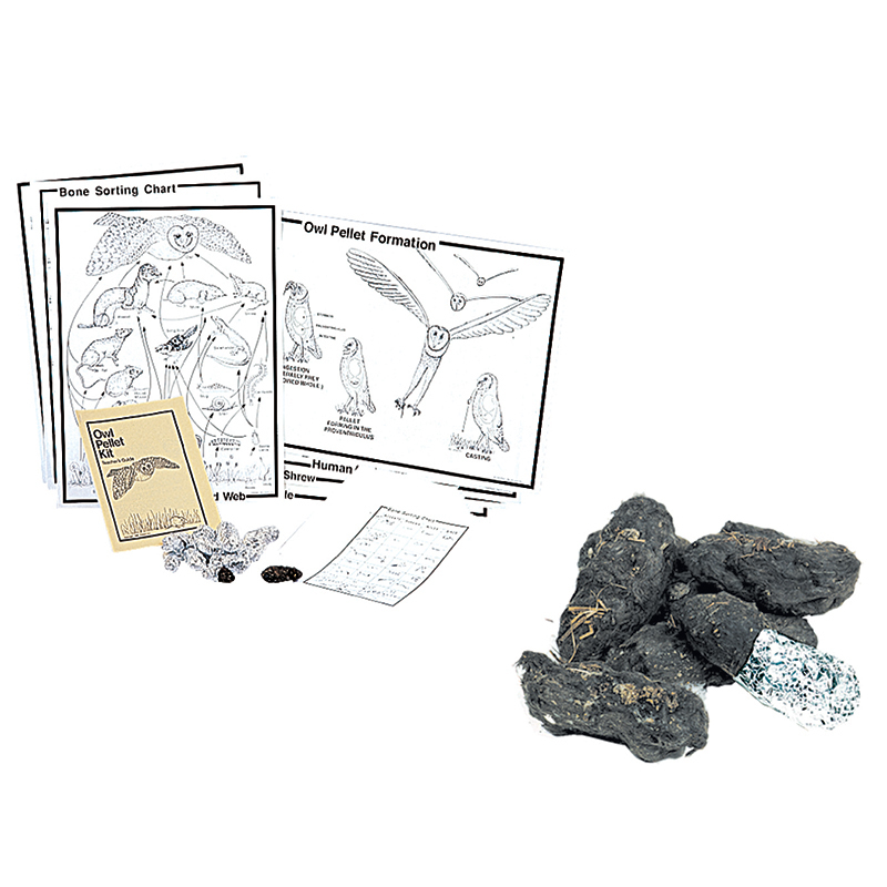 Pellets Inc. Student Owl Pellet Deluxe Classroom Kit