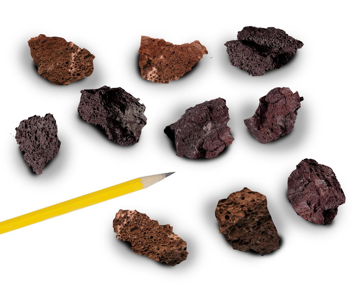Igneous Rocks Scoria Pack Of 10