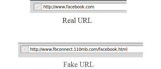 Real vs Fake URL