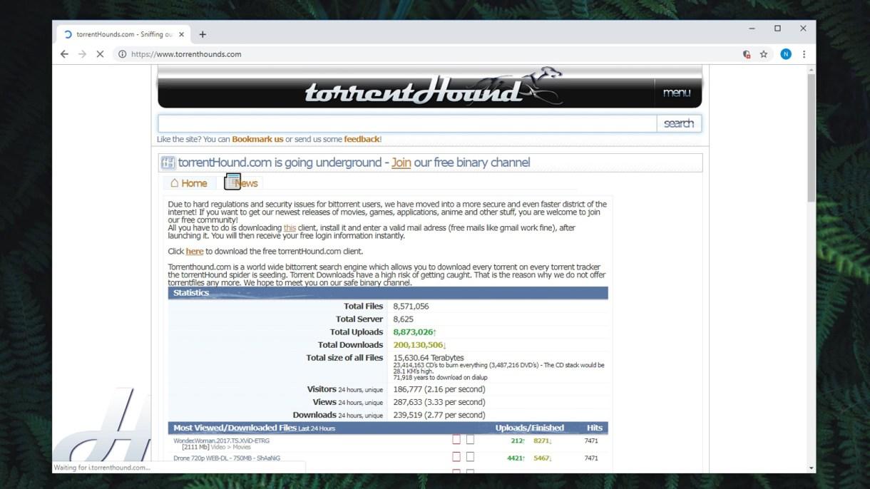 """Résultat de recherche d'images pour """"TorrentHounds"""""""